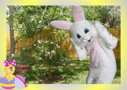 iCaughtTheEasterBunny.com Review