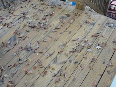 deck treated with Thompson's Waterseal product with dead leaves