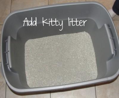 kitty litter in gray plastic bin