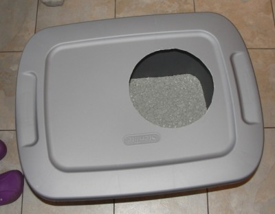 lid back on gray plastic bin with kitty litter inside