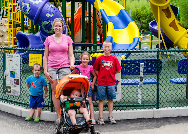 a woman and 4 children standing in front of a playground