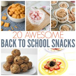 20 Awesome Back To School Snacks