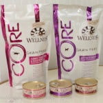 Wellness Core Cat Food Review & Giveaway