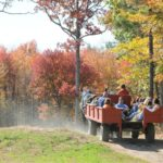 Pumpkin Festival at Charmingfare Farm of New Hampshire