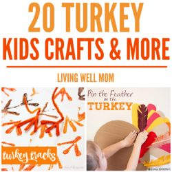 20+ Turkey Crafts & Activities for Kids