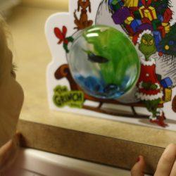 Holiday Gift Guide: PetSmart Grinch & Max Fish Bowl