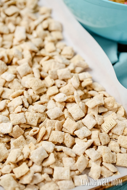 Chex Party Mix Recipe - thedirtygyro.com