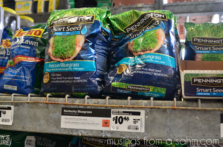 Pennington grass seed at Home Depot