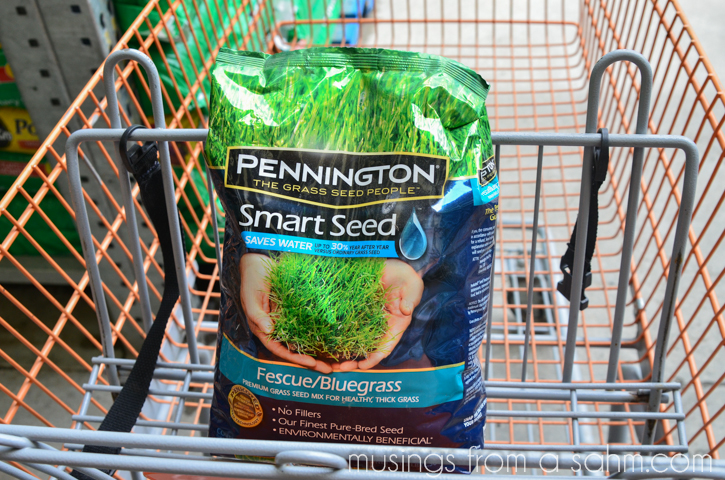 Pennington grass seed in cart