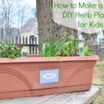 Simple DIY Herb Planters for Kids