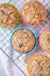 Chock-Full-of-Good-Stuff Morning Glory Muffins Recipe