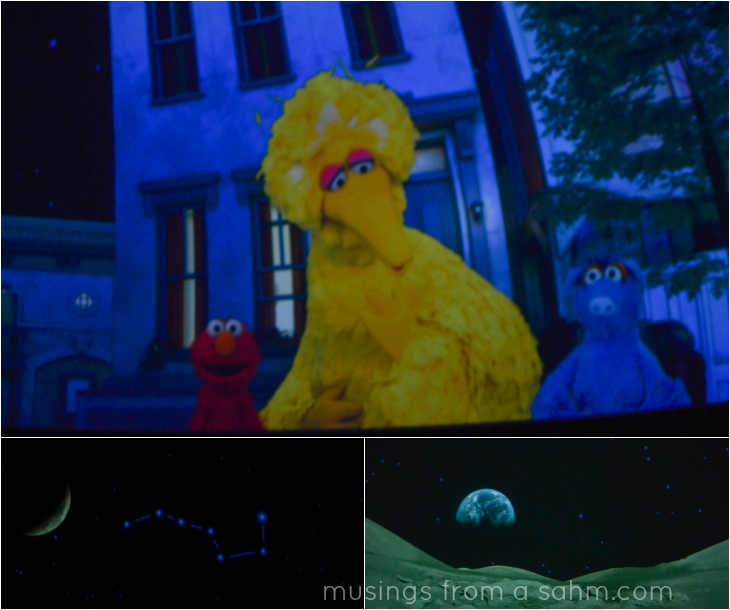 Museum of Science Big Bird