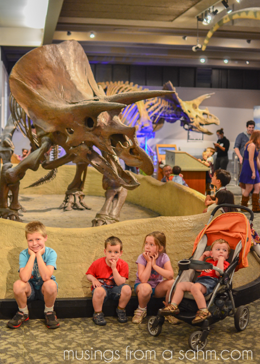 Museum of Science Kids Dinosaur