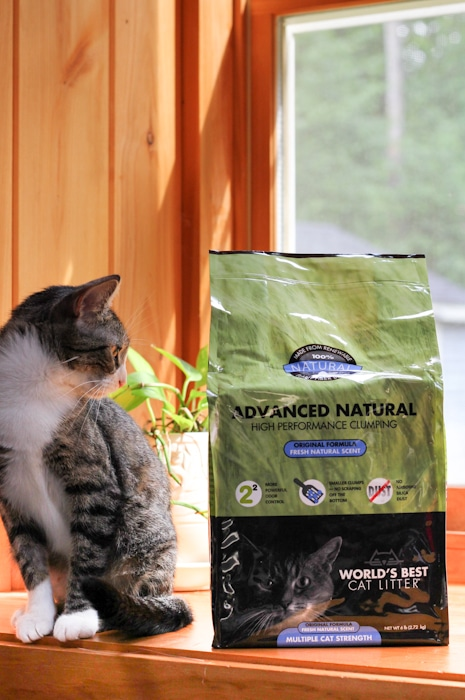 World S Best Cat Litter Advanced Natural Series A Scoop