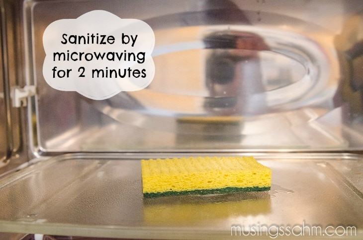 sanitize kitchen sponge microwave