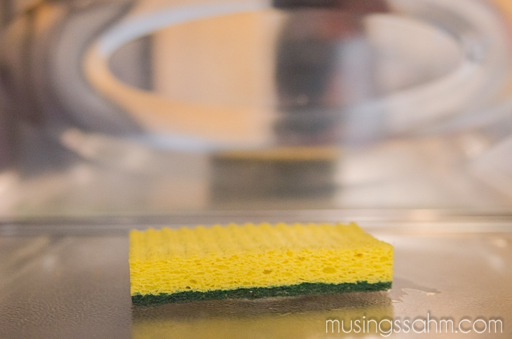sanitized kitchen sponge