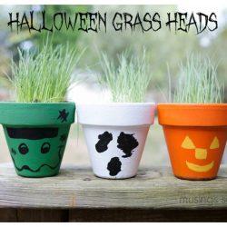 Halloween Grass Heads Flower Pots