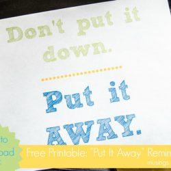 "Free Printable: ""Don't Put it Down; Put it Away"" Poster"