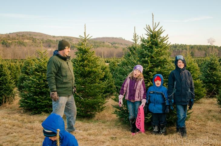 1311_Christmas Tree Farm_007