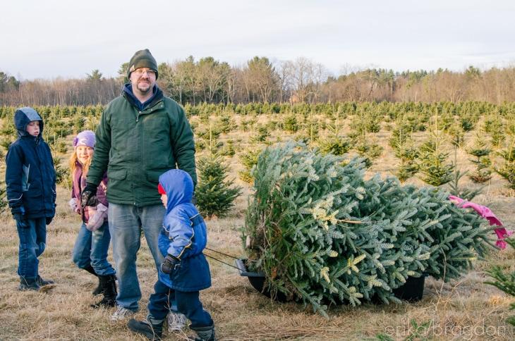 1311_Christmas Tree Farm_016