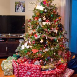 A Few Christmas Photos #Family