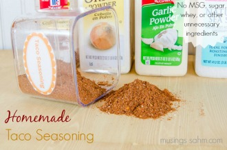 Homemade Taco Seasoning-2