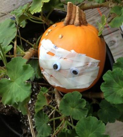 MummyPatchPumpkin-270x300