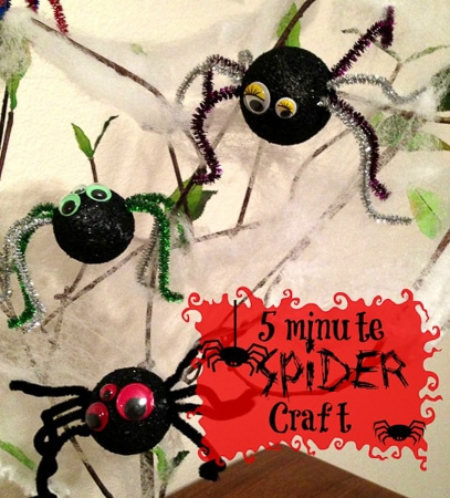 Spider craft project for kids