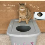 DIY Mess Free Cat Litter Box