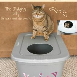The Original DIY Mess Free Cat Litter Box
