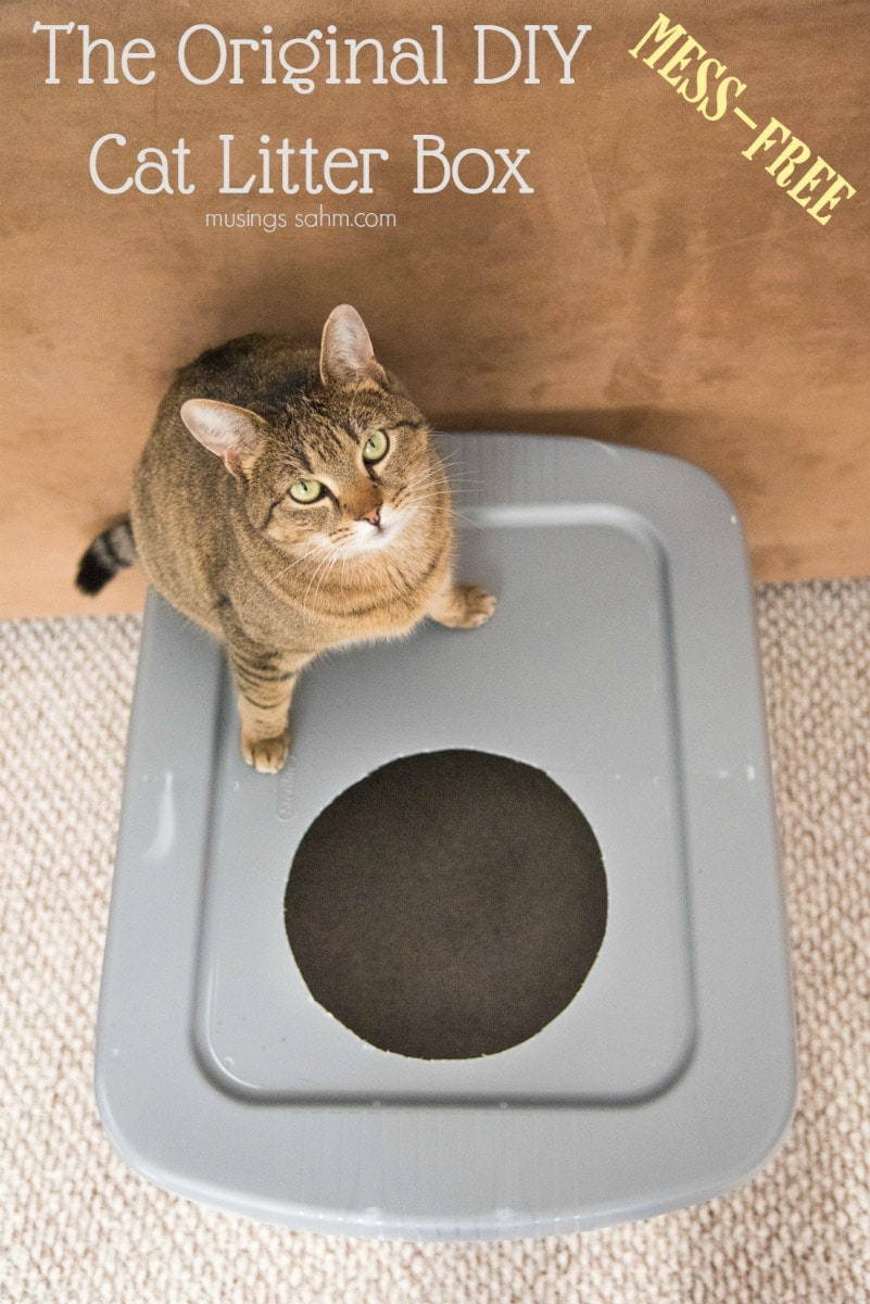 Diy Mess Free Cat Litter Box Simple Anyone Can Do It Really