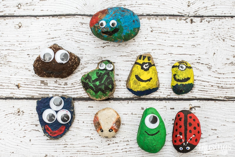 How To Make Pet Rocks Living Well Mom
