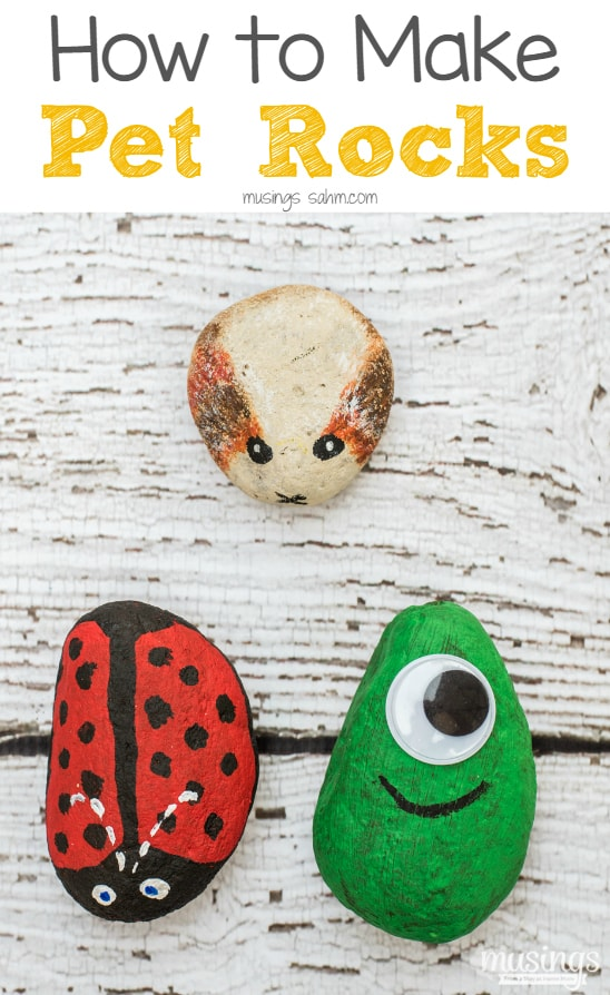 How to make pet rocks musings from a stay at home mom for Stay at home craft jobs