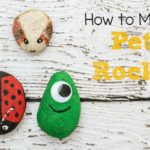 How to Make Pet Rocks