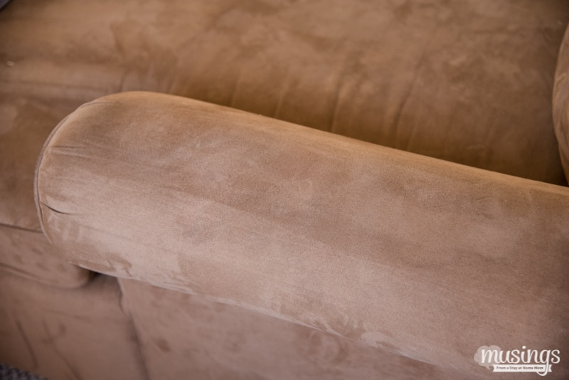 cleaned brown microfiber couch