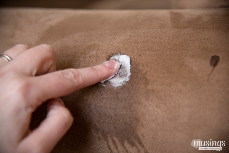 cleaning rubbing baking soda onto stained microfiber couch