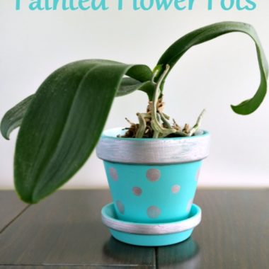 Easy Painted Flower Pot