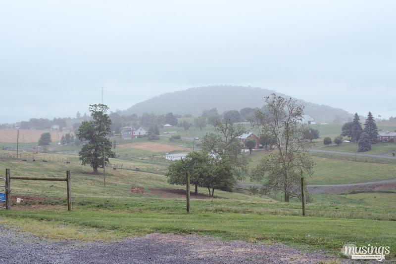 beautiful Virginia