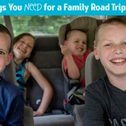 15 Things You Need for a Family Road Trip