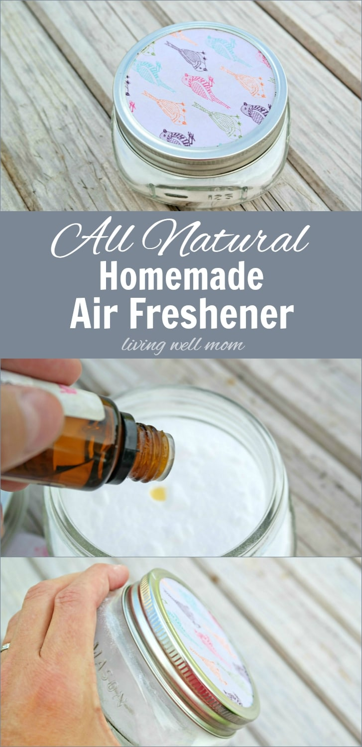 All Natural Homemade Air Freshener - Musings From a Stay ...