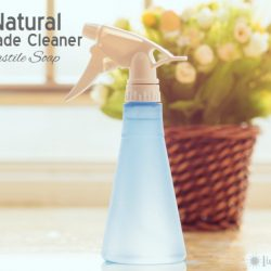 All Natural Homemade Cleaner with Castile Soap