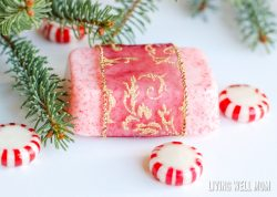 Homemade Peppermint Goat Milk Soap