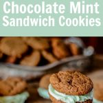 Chocolate Mint Sandwich Cookies