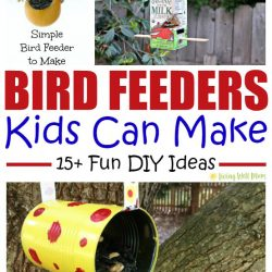 15+ Bird Feeders Kids Can Make