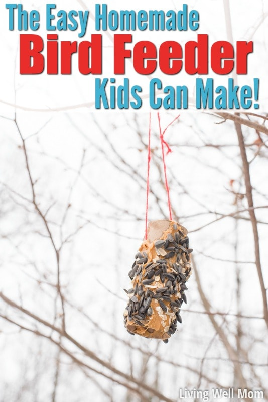 Easy Homemade Bird Feeder Kids Can Make