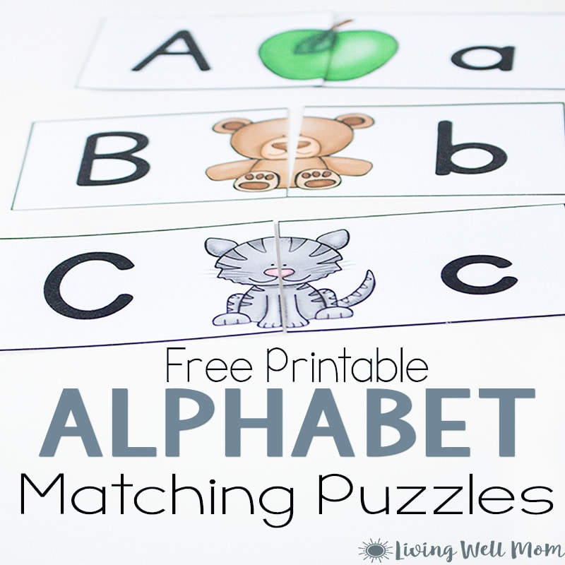 Uppercase Lowercase Letter Matching Puzzle For