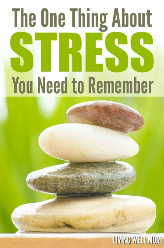 Tired of worrying about everything? Whether it's your career, parenting, or any number of things, life is crazy and it's easy to become anxious. But there's one important thing about stress you need to know. Find out what it is here: