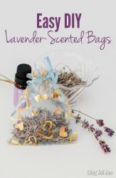 Easy DIY Lavender-Scented Bags