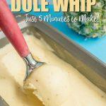 homemade disney dole whip recipe