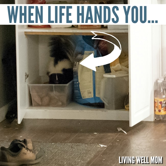 when-life-hands-you
